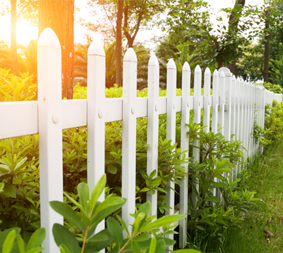 Picture of Wood Fencing