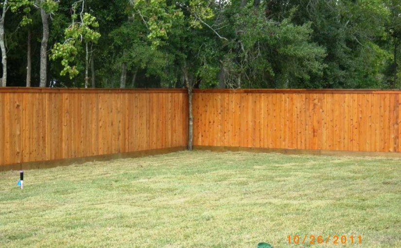 Wooden Fences4