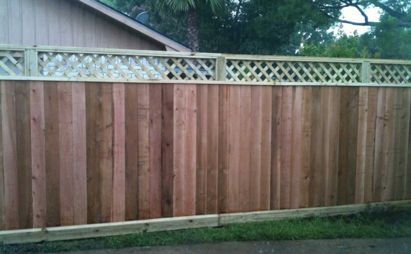 Wooden Fences26