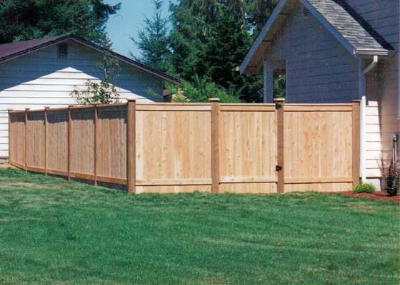 Wooden Fences38