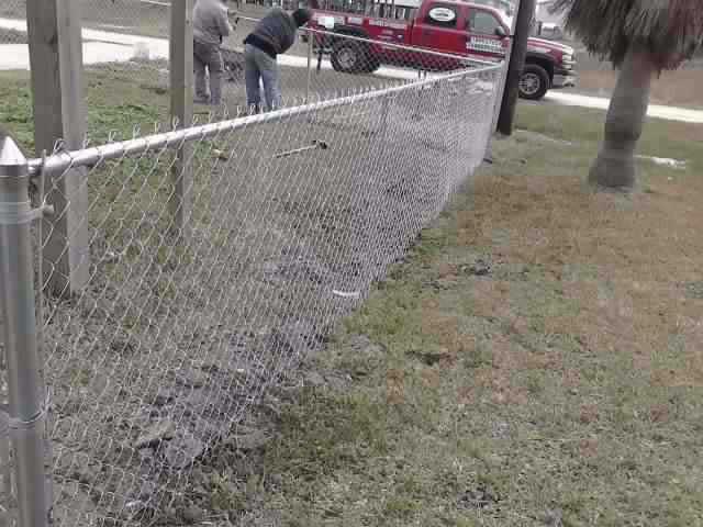 Chain Link Fences29