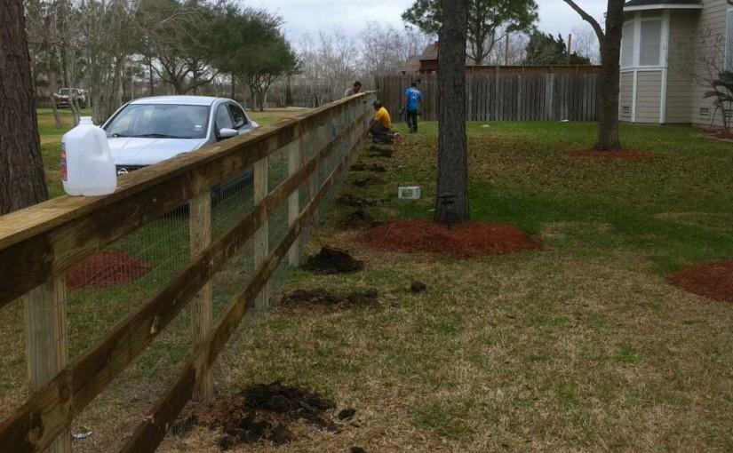 Wooden Fences49