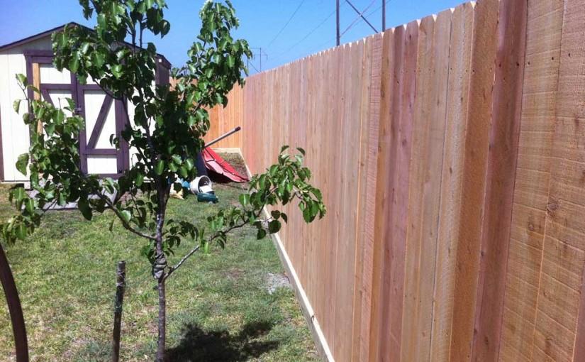 Wooden Fences59