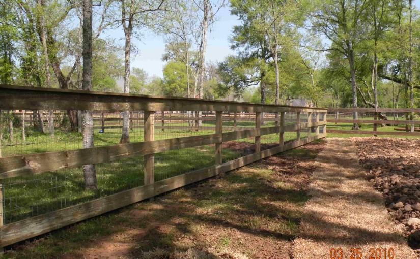 Wooden Fences94